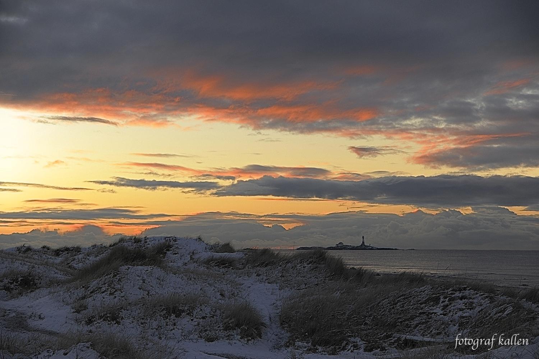 Naturfotografi 3. desember 2017 - fotografkallen.com - julekalender luke 3