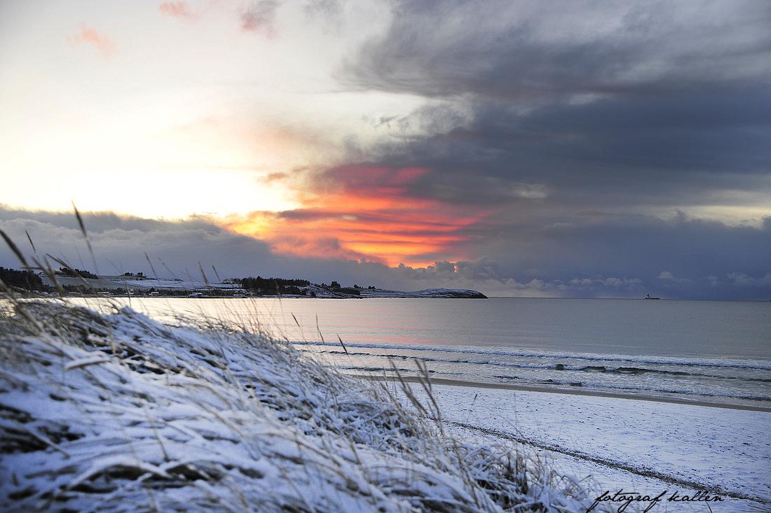 Naturfotografi - 14.-16. desember 2017 - fotografkallen.com